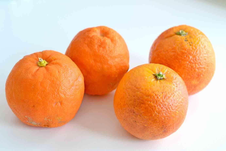 Pomeranzen und Blutorangen