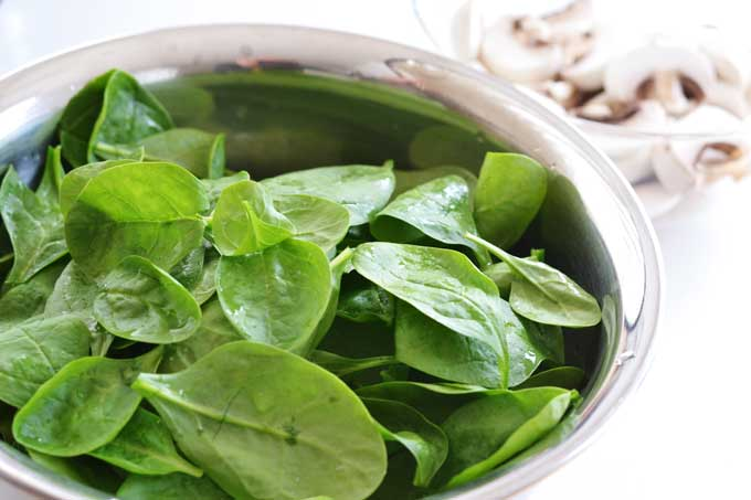Junger Spinat, gewaschene Blätter