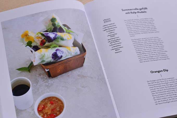 Algen Kochbuch Innenseite mit Rezepten