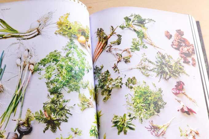 Innenseite mit Fotos von Gemüse im Buch Leaf-to-Root
