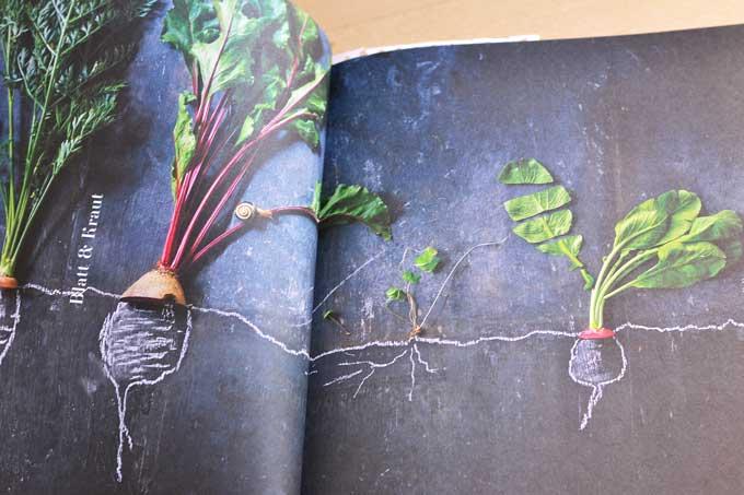 Bildcollage auf einer Doppelseite des Buchs Leaf to Root
